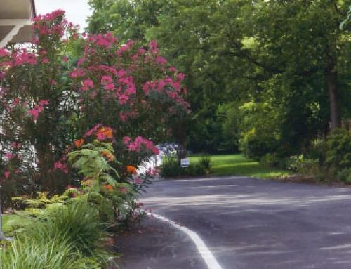 Driveway to The Studio